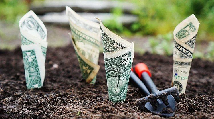 Wiosna w kredytach – są bardziej dostępne i atrakcyjniejsze cenowo